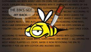 WEPT EPA disses bees