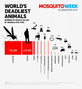 Bill Gates on the World's Deadliest Animals