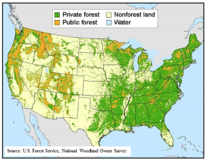 Ownership of US forest land