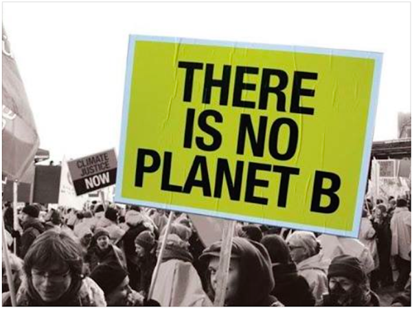 There is no Planet B (rainforest site)