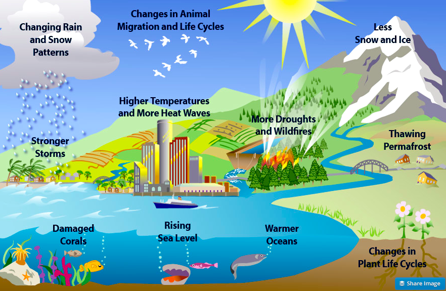 global warming and its effects on earth Effects of global warming lesson concepts: students will read an article on one effect of climate change (global warming) hs earth science 6c.
